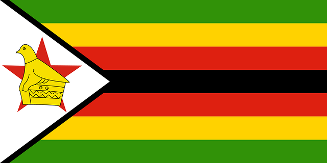 Update: Statement from Zimbabwean Government 5